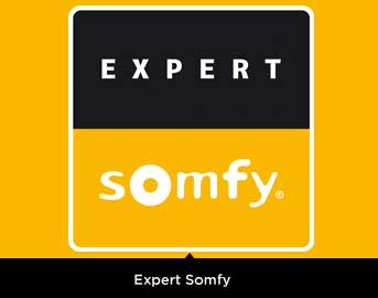 Distribuidores Expert Somfy